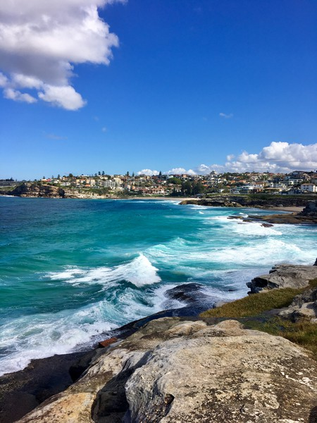 Küstenwalk vom Bondi Beach