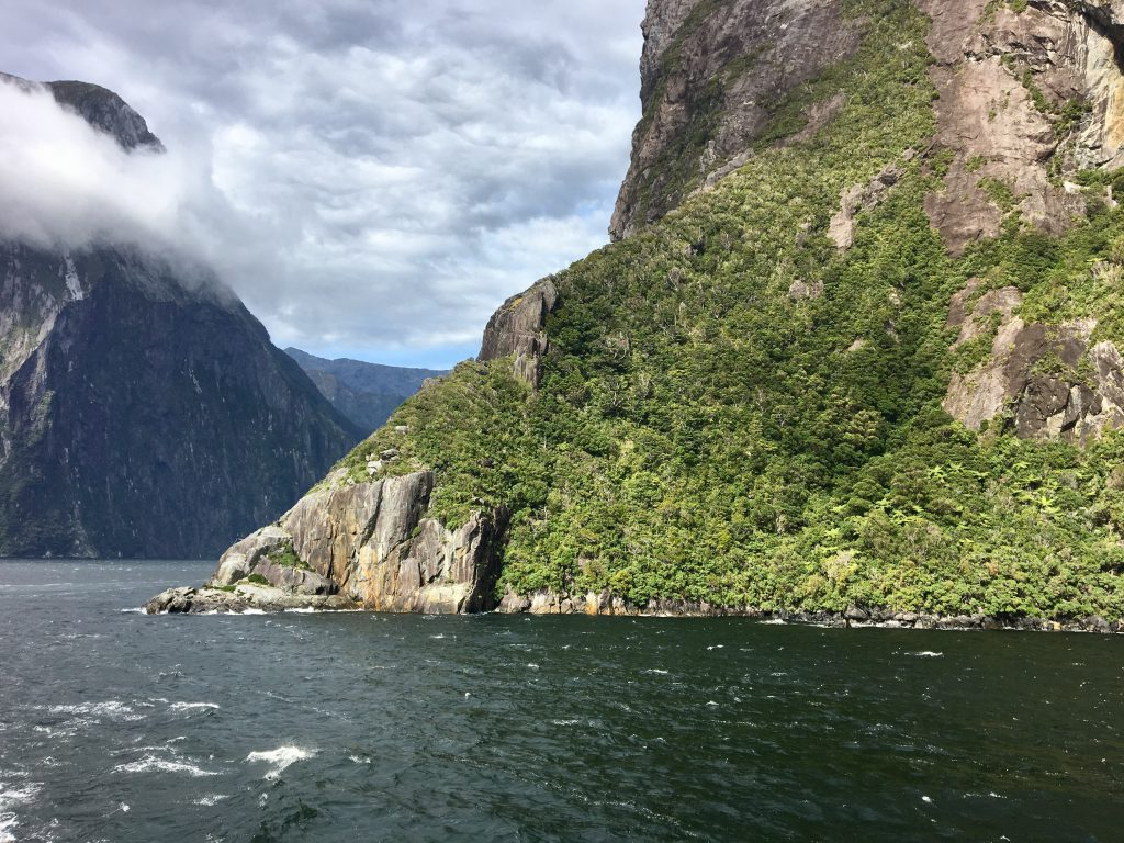 Milford Sounds Südinsel