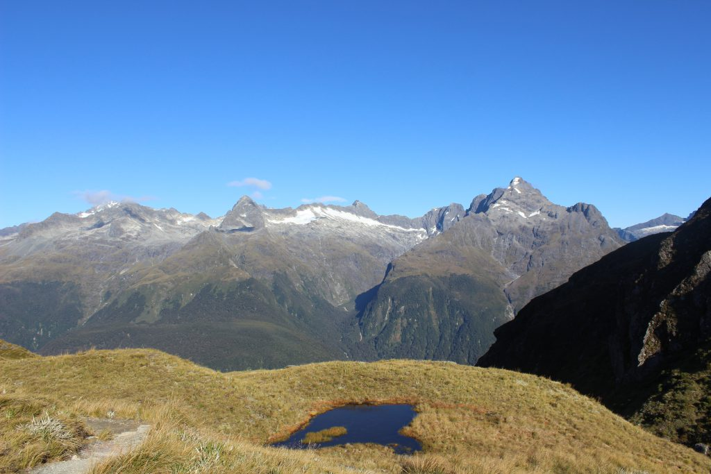 Routeburn Track- Concial Hill
