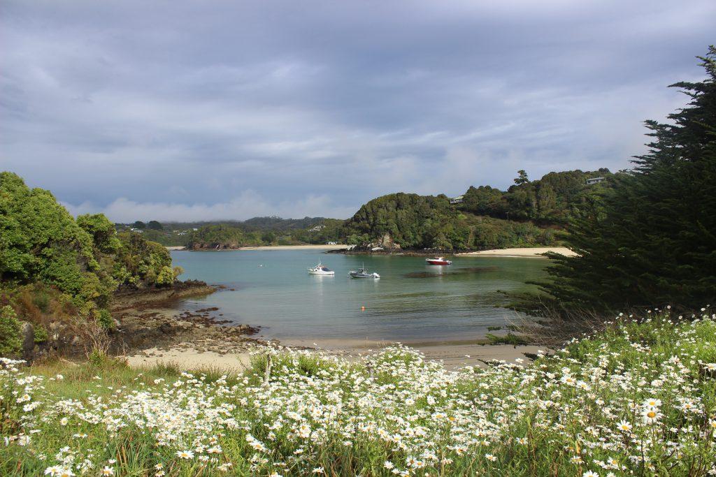 Steward Island